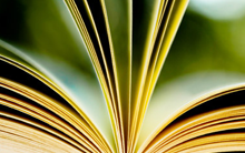 Bibliotecología (modalidad a distancia)