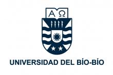 Universidad del Bío Bío