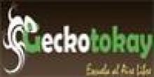 Escuela al Aire Libre Gecko Tokay