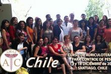 Curso de Auriculoterapia en Chile